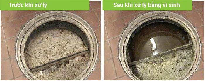 bể tách mỡ trước và sau khi xử lý bằng vi sinh
